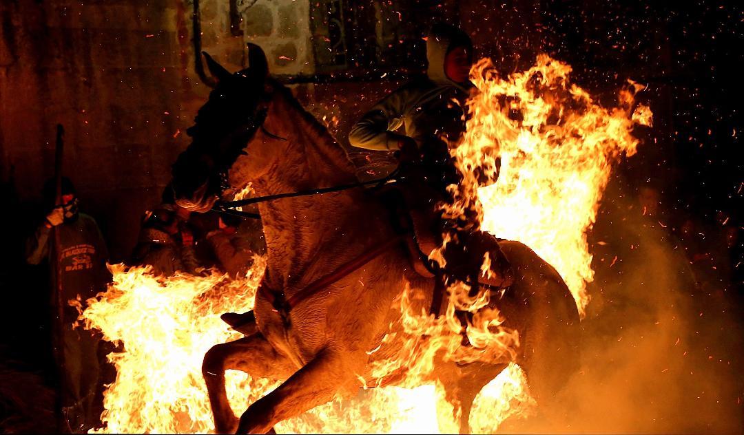Caballos entre el fuego: la polémica tradición de 'Las Luminarias' en España