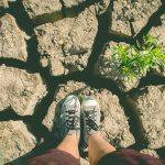 Día Mundial Mundial del Agua: escasez en México y en España