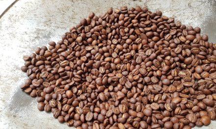 Los secretos del café mexicano en España