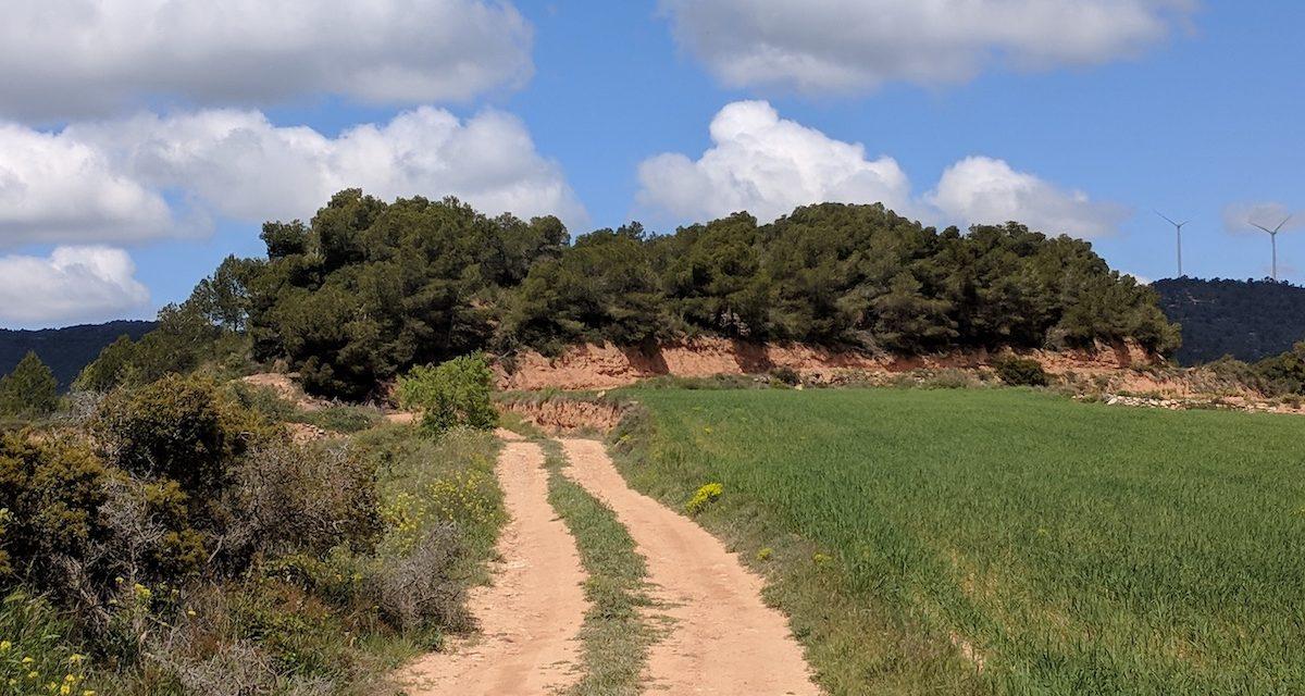 Ruta del Císter, día 2: de Poblet a Rocallaura