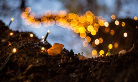 El Apalpador trae castañas y regalos a los niños gallegos por Navidad