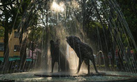 Coyoacán: el barrio bohemio de México