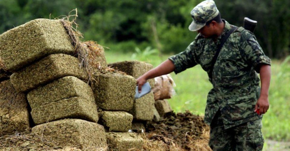 Pasos para legalizar marihuana en México, mayor productor mundial