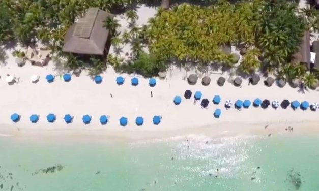 Playas cubiertas de algas, respuestas diferentes en México y en España