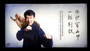 Jackie Chan con pangolín para campaña de conservación