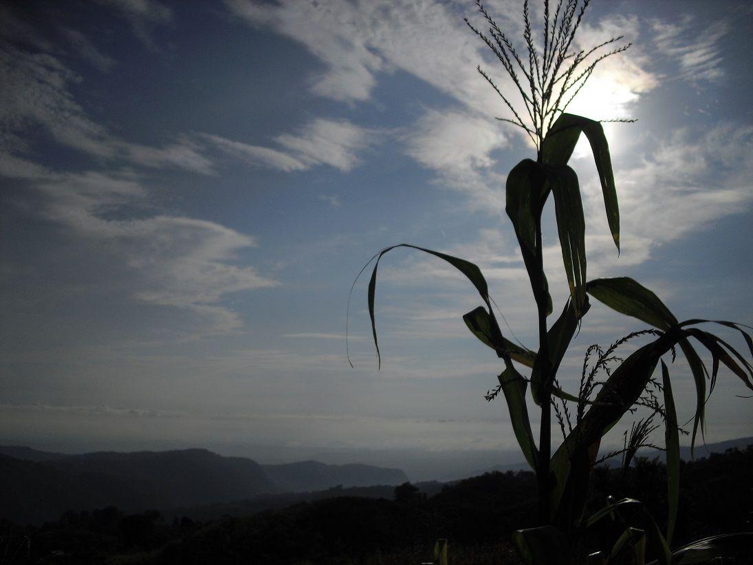 Vistas desde Cuetzalan