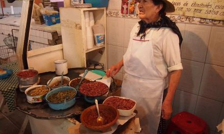 Insectos, manjares ancestrales en México