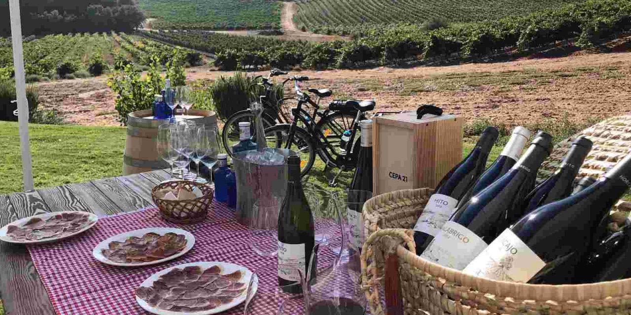 Agradecida, segura y con la calidad de siempre: Ruta del Vino Ribera del Duero