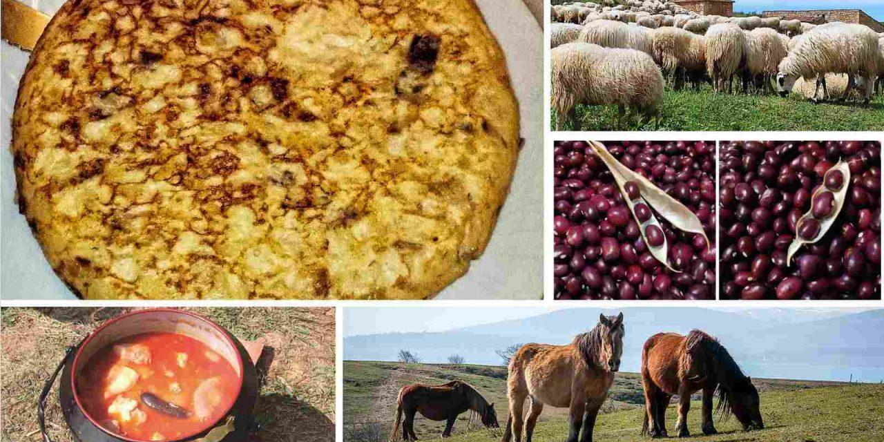 'Burgos Alimenta': deliciosa oferta gastronómica que une pasado con presente y futuro