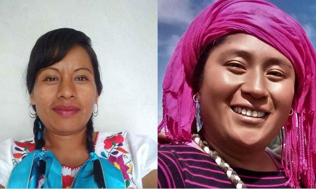 Pueblos originarios por la biodiversidad en México