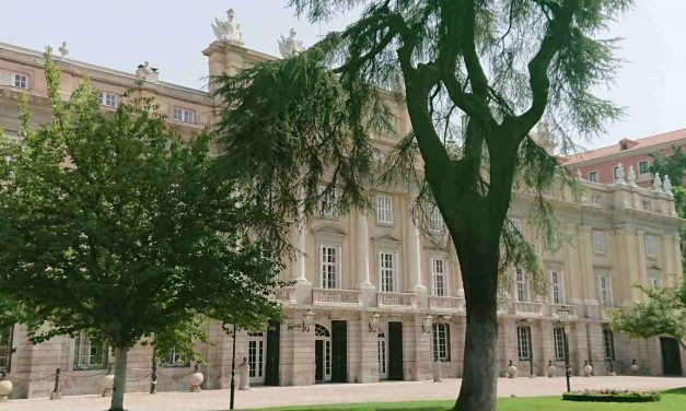 El Palacio de Liria bien merece una visita